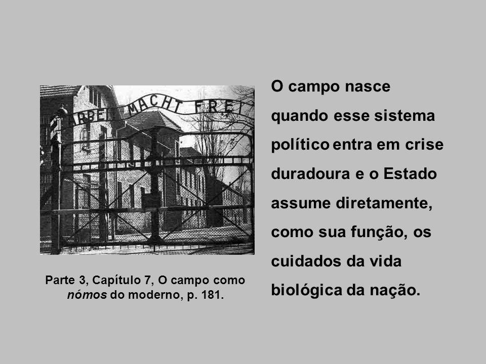 O campo nasce quando esse sistema político entra em crise duradoura e o Estado assume diretamente, como sua função, os cuidados da vida biológica da n