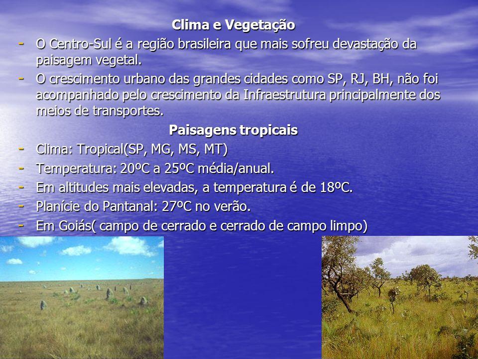 Clima e Vegetação - O Centro-Sul é a região brasileira que mais sofreu devastação da paisagem vegetal.