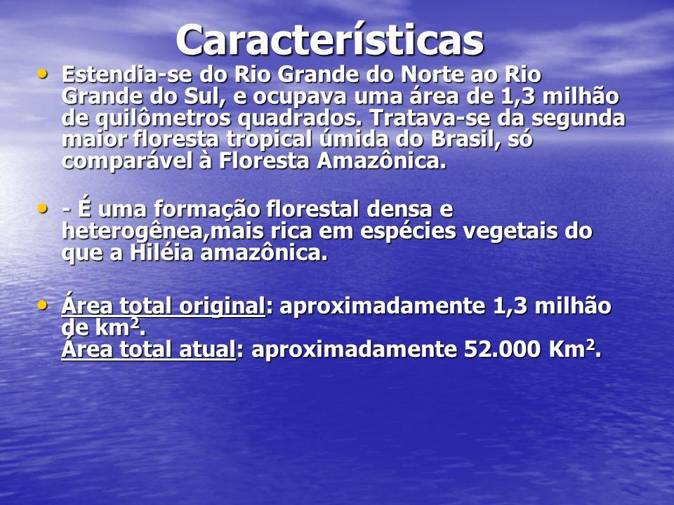 Características Características Estendia-se do Rio Grande do Norte ao Rio Grande do Sul, e ocupava uma área de 1,3 milhão de quilômetros quadrados.