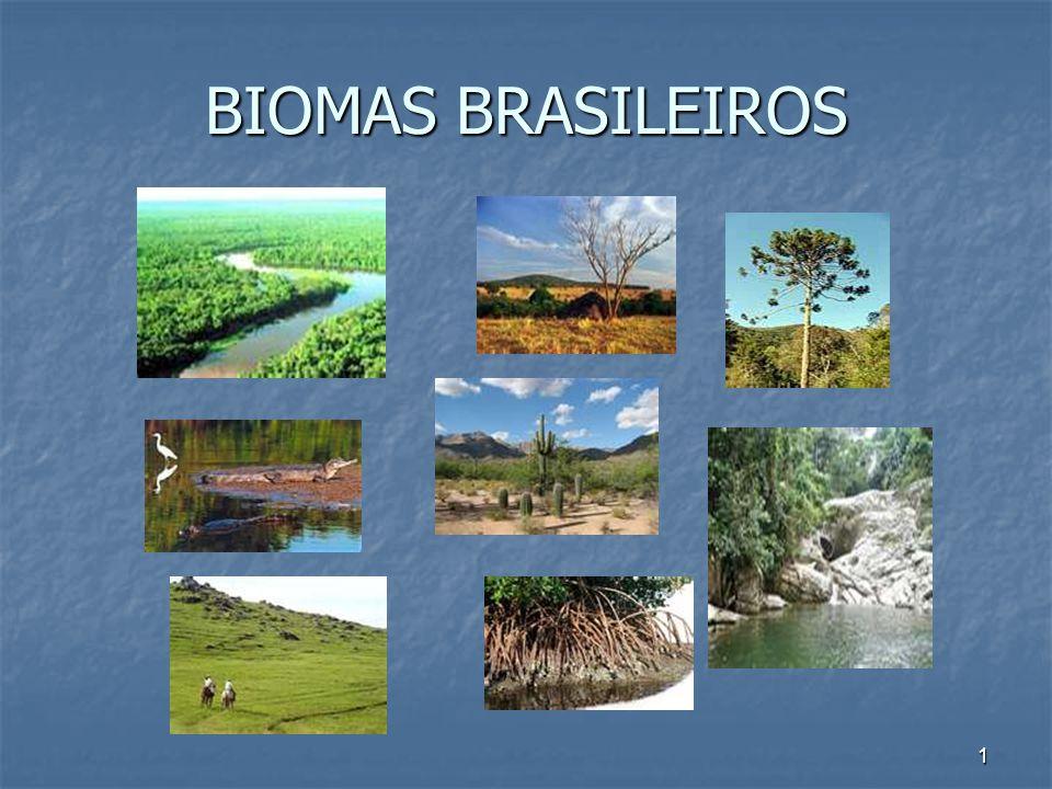 1 BIOMAS BRASILEIROS