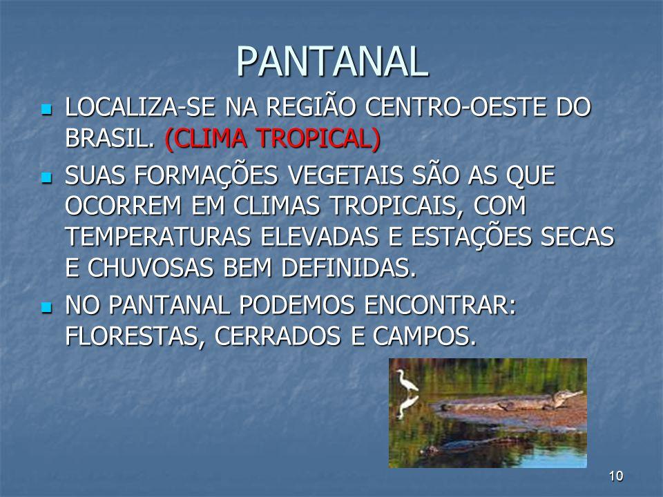 10 PANTANAL LOCALIZA-SE NA REGIÃO CENTRO-OESTE DO BRASIL. (CLIMA TROPICAL) LOCALIZA-SE NA REGIÃO CENTRO-OESTE DO BRASIL. (CLIMA TROPICAL) SUAS FORMAÇÕ