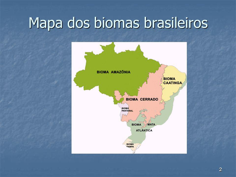 2 Mapa dos biomas brasileiros