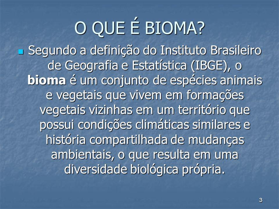 3 O QUE É BIOMA? Segundo a definição do Instituto Brasileiro de Geografia e Estatística (IBGE), o bioma é um conjunto de espécies animais e vegetais q
