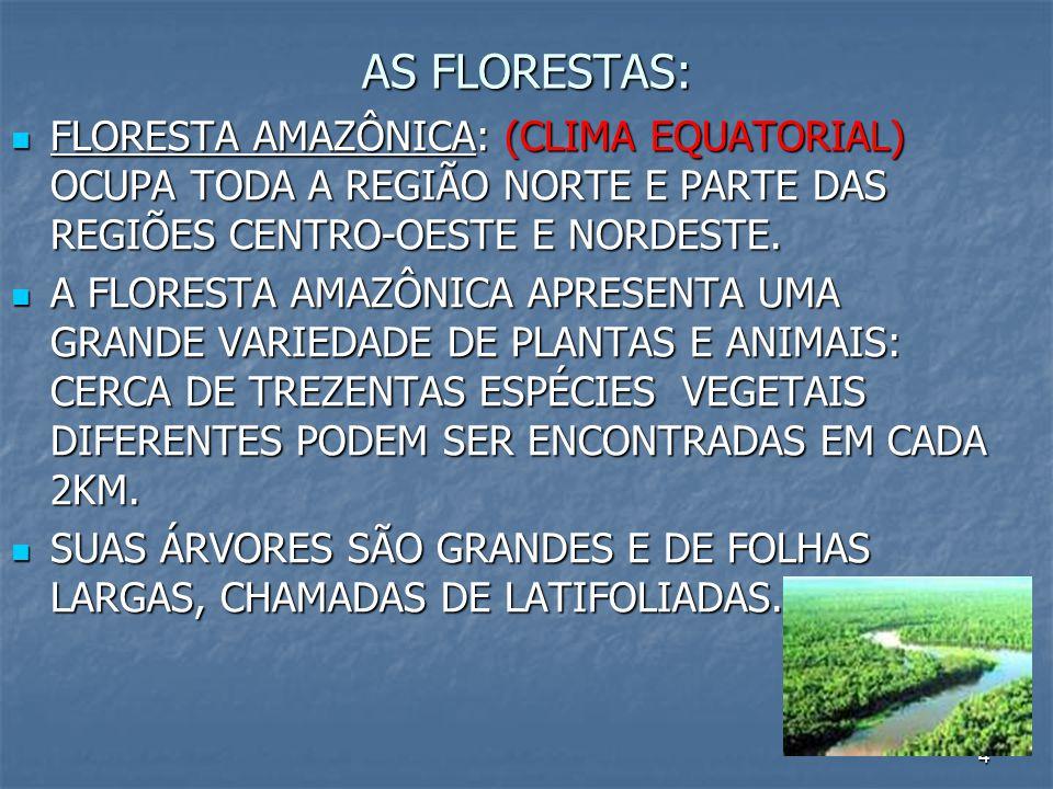 4 AS FLORESTAS: FLORESTA AMAZÔNICA: (CLIMA EQUATORIAL) OCUPA TODA A REGIÃO NORTE E PARTE DAS REGIÕES CENTRO-OESTE E NORDESTE. FLORESTA AMAZÔNICA: (CLI