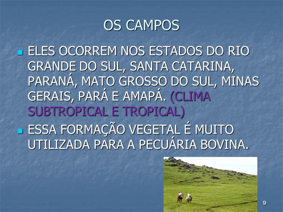 9 OS CAMPOS ELES OCORREM NOS ESTADOS DO RIO GRANDE DO SUL, SANTA CATARINA, PARANÁ, MATO GROSSO DO SUL, MINAS GERAIS, PARÁ E AMAPÁ. (CLIMA SUBTROPICAL