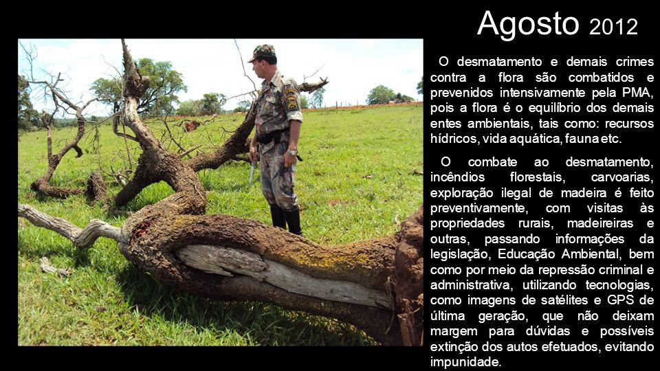 Agosto 2012 O desmatamento e demais crimes contra a flora são combatidos e prevenidos intensivamente pela PMA, pois a flora é o equilíbrio dos demais