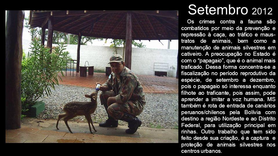 Setembro 2012 Os crimes contra a fauna são combatidos por meio da prevenção e repressão à caça, ao tráfico e maus- tratos de animais, bem como a manut