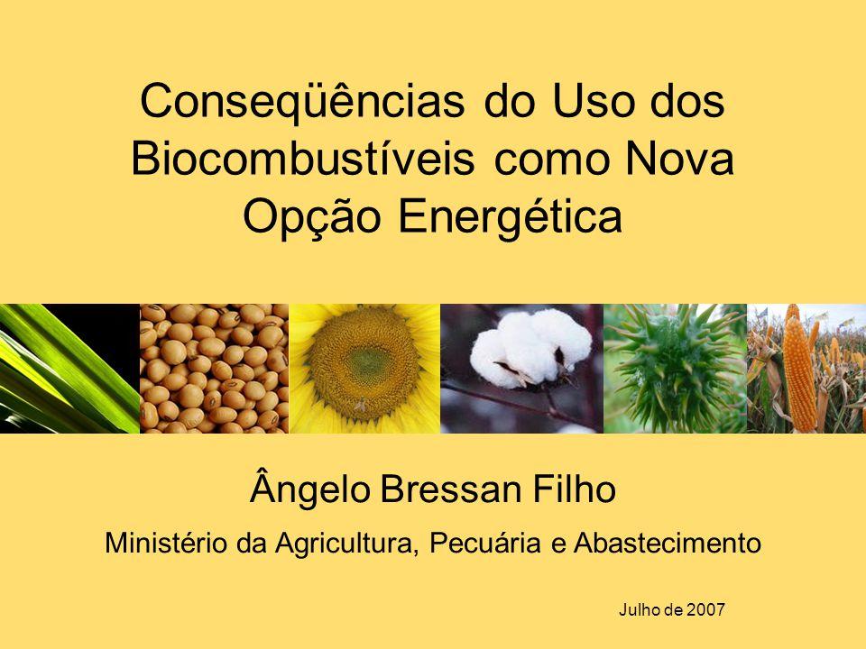 Ângelo Bressan Filho Ministério da Agricultura, Pecuária e Abastecimento Julho de 2007 Conseqüências do Uso dos Biocombustíveis como Nova Opção Energé