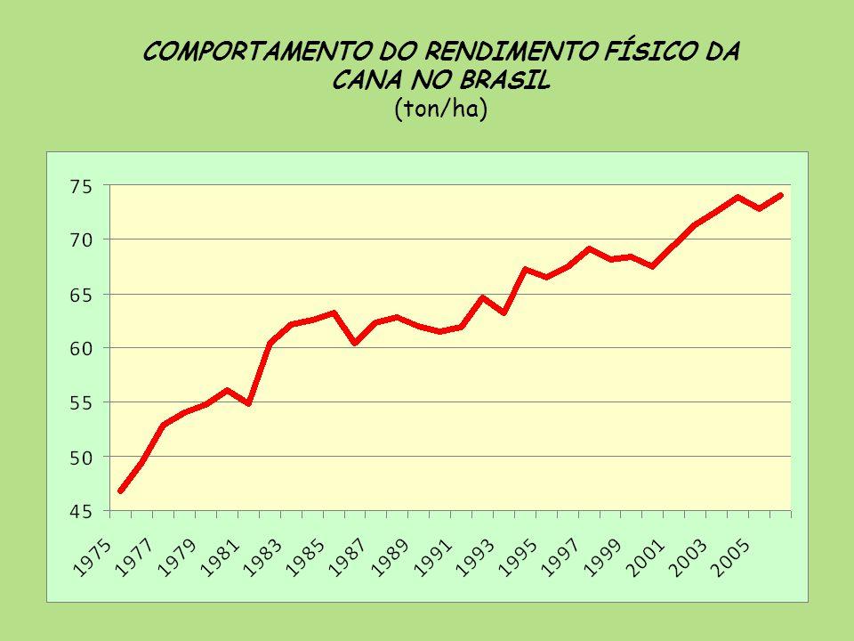 COMPORTAMENTO DO RENDIMENTO FÍSICO DA CANA NO BRASIL (ton/ha)
