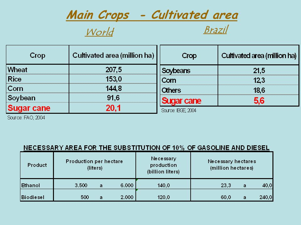 Main Crops - Cultivated area World Brazil