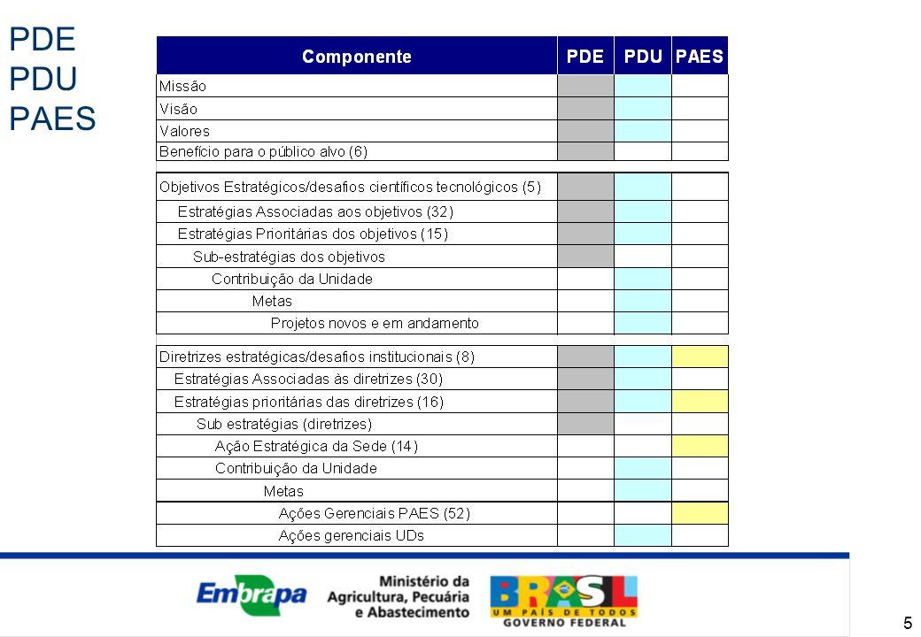 6 PAES - 1ª versão PAES - versão atualizada PAESPAES Estratégias Prioritárias (16/30) Ações Estratégicas da Sede (17) Ações Gerenciais (76) Diretrizes Estratégicas (8) PAESPAES Estratégias Prioritárias (14/30) Ações Estratégicas da Sede (14) Ações Gerenciais (52) Diretrizes Estratégicas (8)