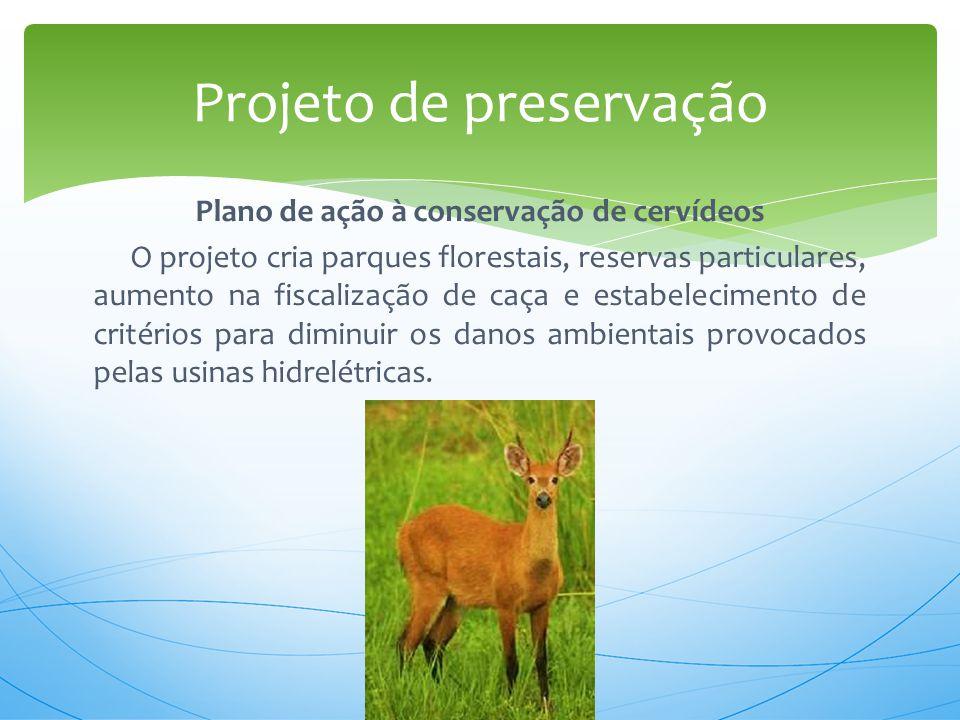 Plano de ação à conservação de cervídeos O projeto cria parques florestais, reservas particulares, aumento na fiscalização de caça e estabelecimento d