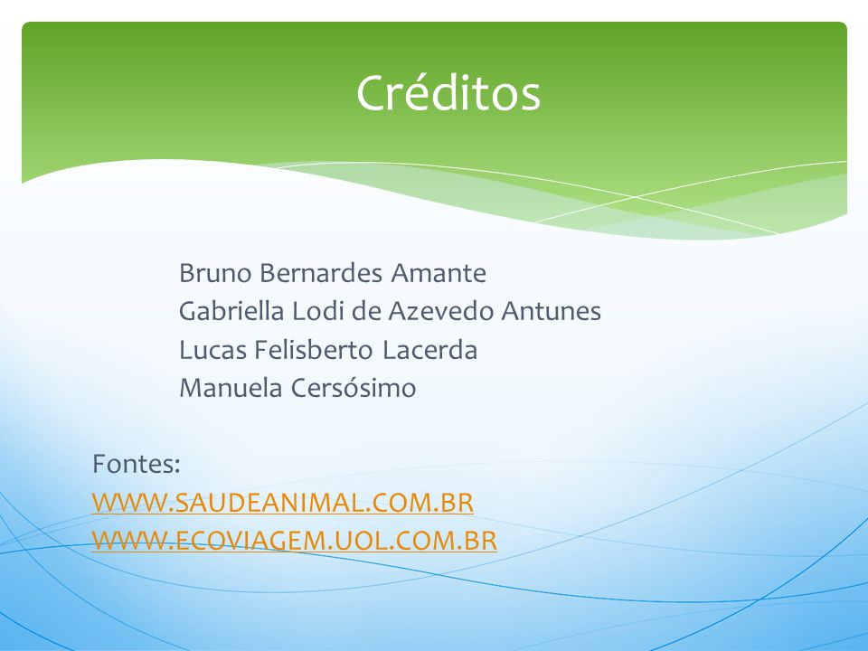 Bruno Bernardes Amante Gabriella Lodi de Azevedo Antunes Lucas Felisberto Lacerda Manuela Cersósimo Fontes: WWW.SAUDEANIMAL.COM.BR WWW.ECOVIAGEM.UOL.C
