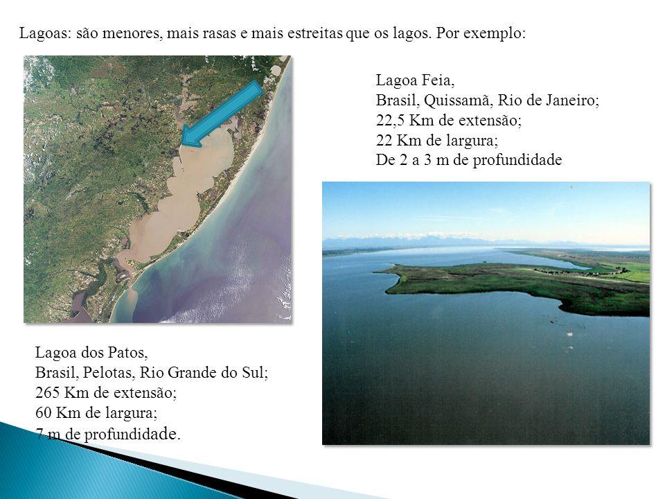 Lagoas: são menores, mais rasas e mais estreitas que os lagos.
