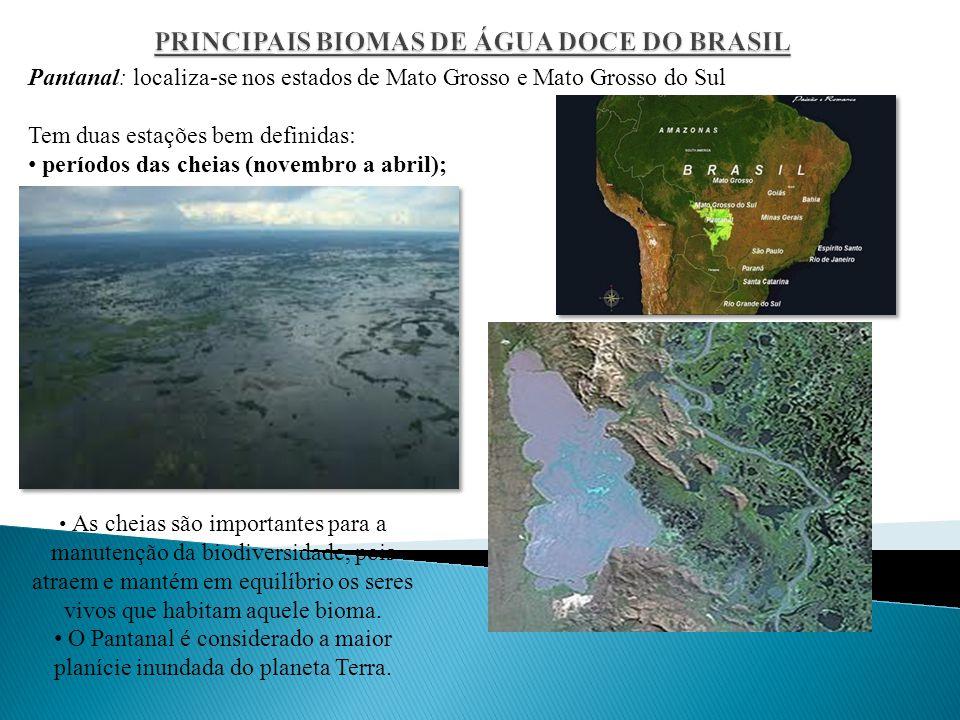 Pantanal: localiza-se nos estados de Mato Grosso e Mato Grosso do Sul Tem duas estações bem definidas: períodos das cheias (novembro a abril); As cheias são importantes para a manutenção da biodiversidade, pois atraem e mantém em equilíbrio os seres vivos que habitam aquele bioma.