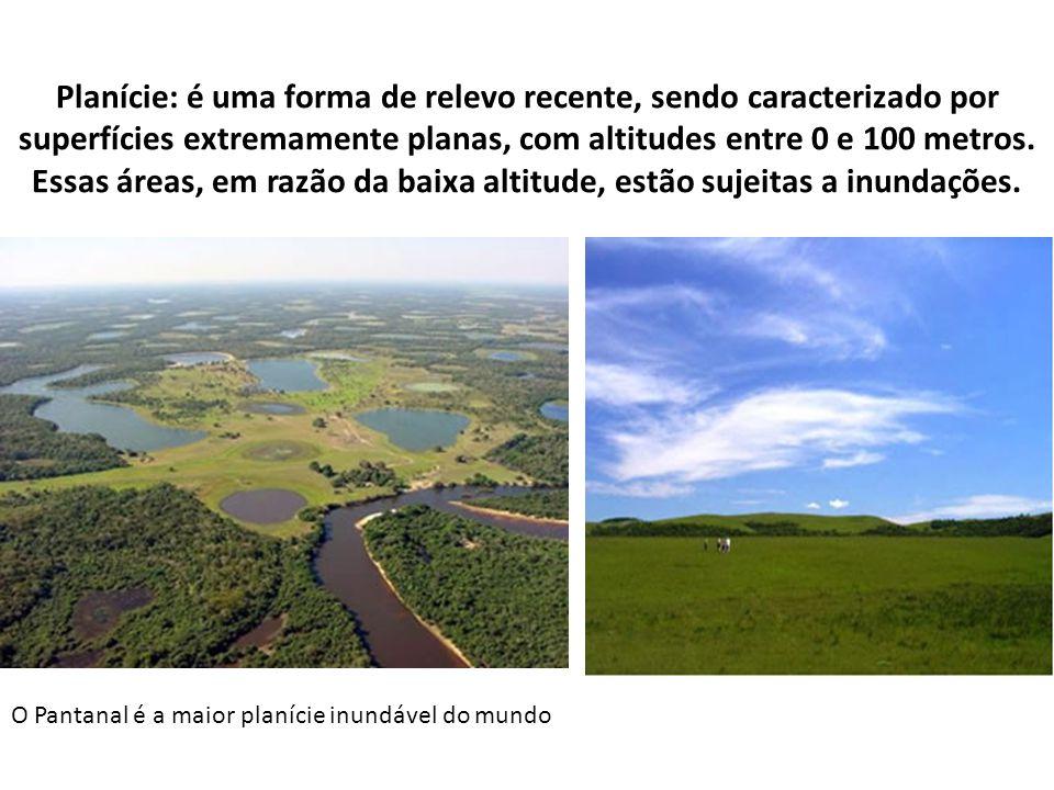 Planície: é uma forma de relevo recente, sendo caracterizado por superfícies extremamente planas, com altitudes entre 0 e 100 metros. Essas áreas, em