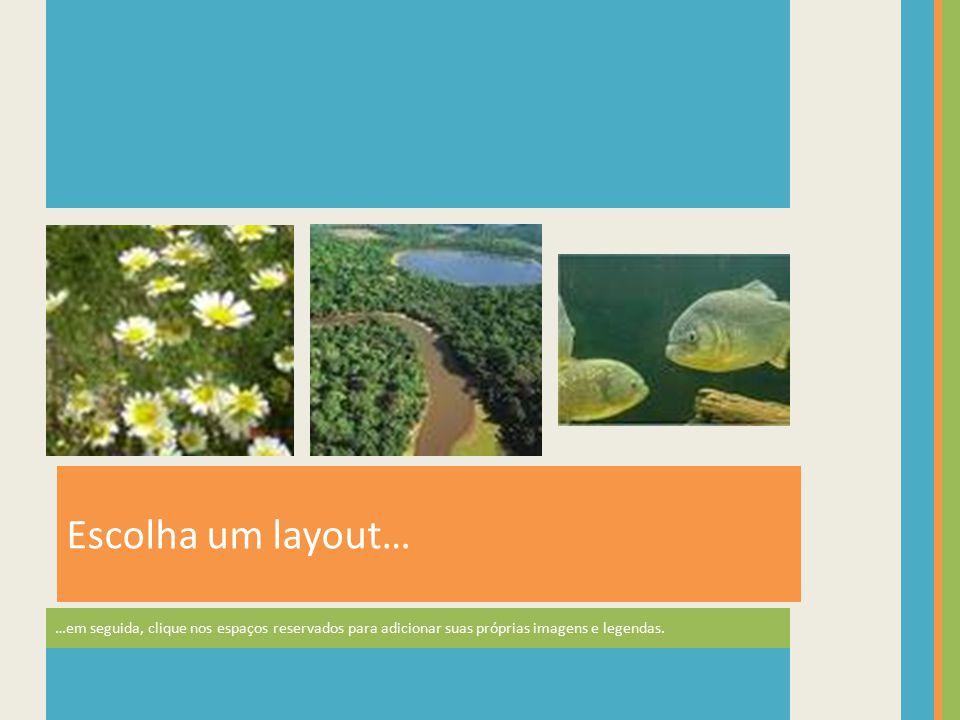 Na guia Ferramentas de Imagem | Formatar, você pode criar seus próprios quadros e fazer correções em imagens, como ajustar o contraste e o brilho ou cortar a imagem para que fique com a aparência correta.