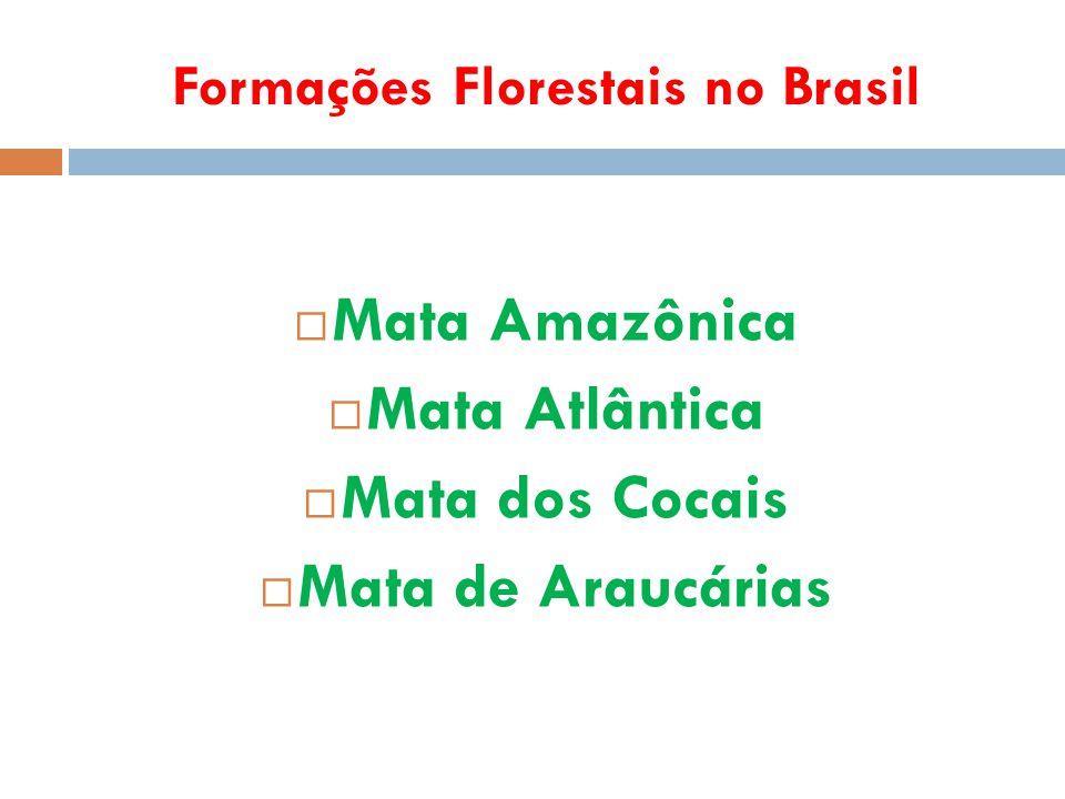 Formações Florestais no Brasil  Mata Amazônica  Mata Atlântica  Mata dos Cocais  Mata de Araucárias