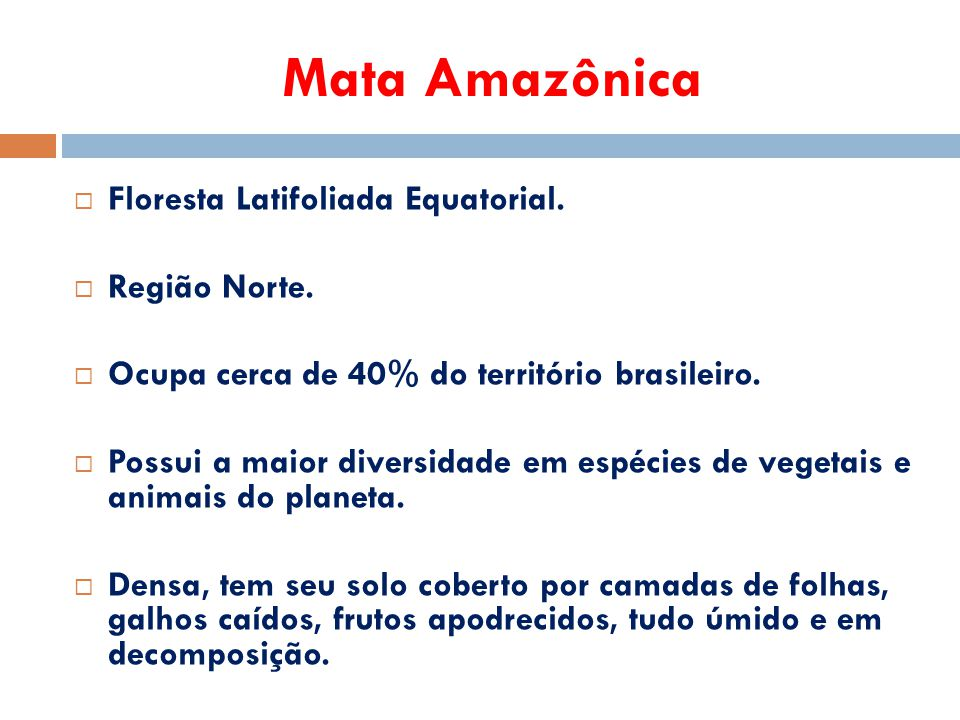 Mata Amazônica  Floresta Latifoliada Equatorial.  Região Norte.  Ocupa cerca de 40% do território brasileiro.  Possui a maior diversidade em espéc