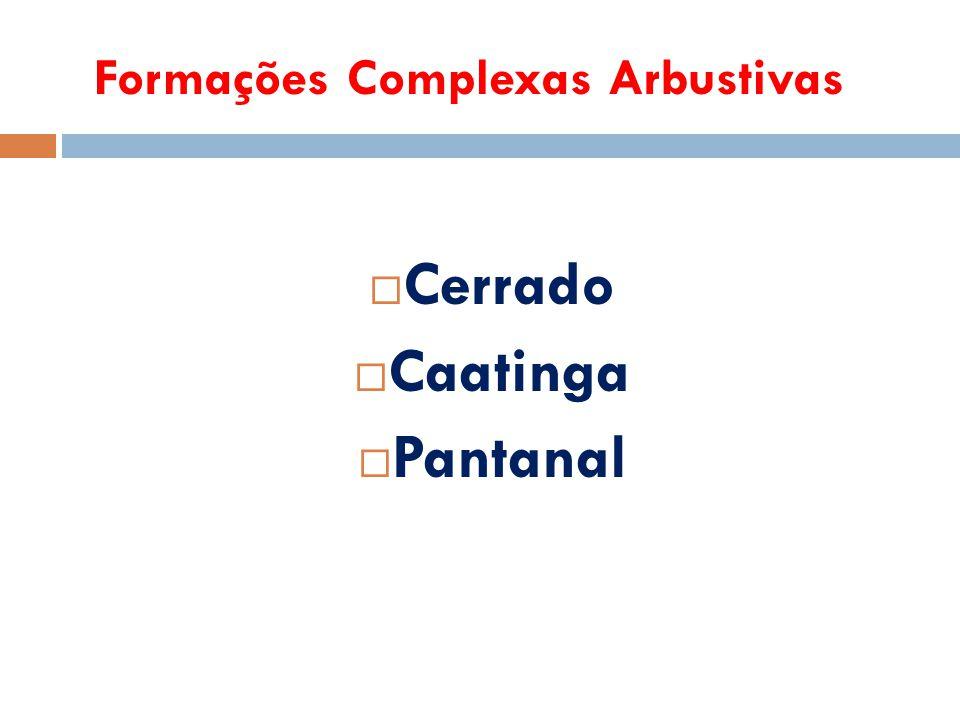Formações Complexas Arbustivas  Cerrado  Caatinga  Pantanal