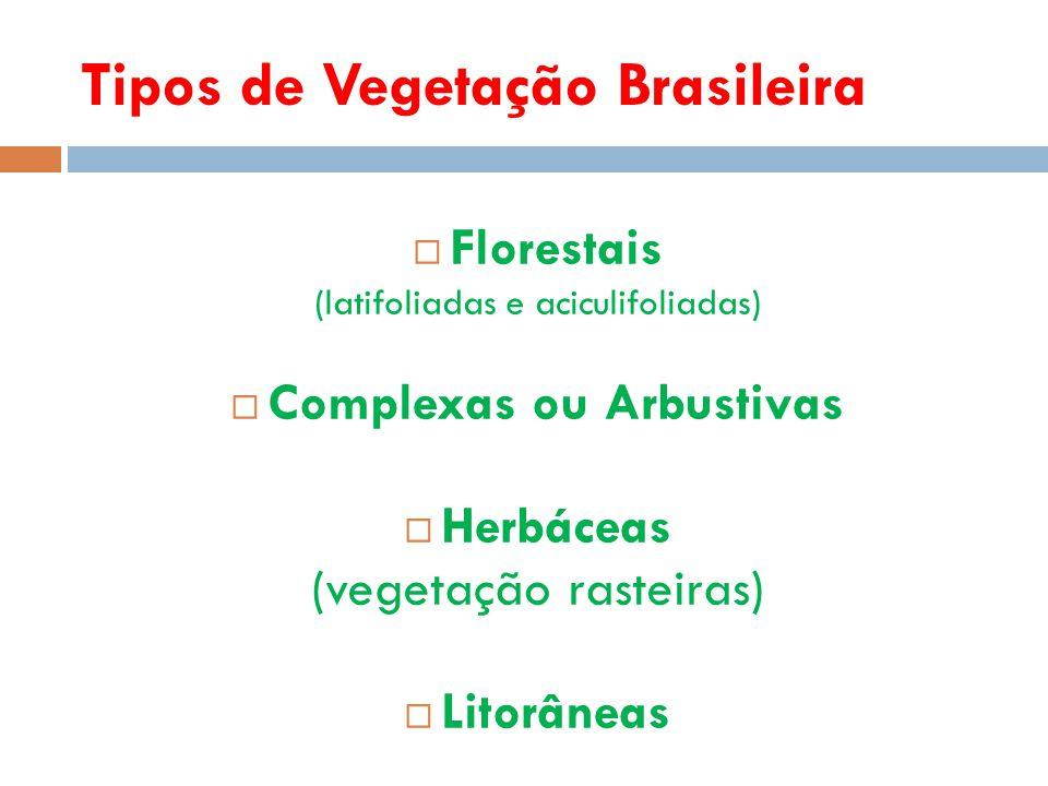 Formação Florestal  Latifoliadas: Possuem folhas largas, para facilitar a transpiração (florestas tropicais).