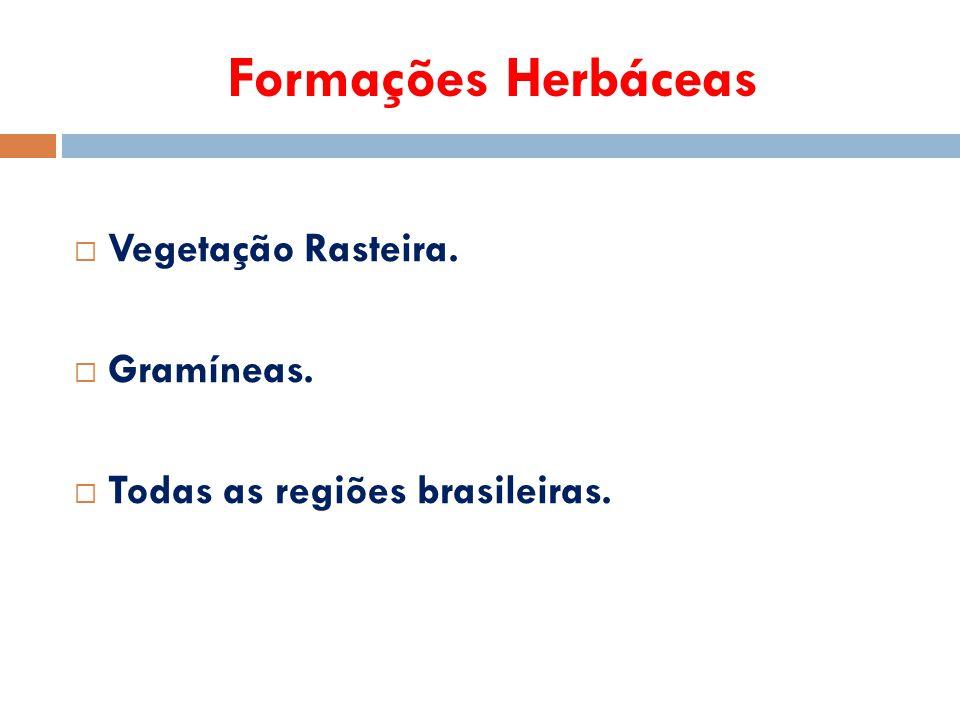 Formações Herbáceas  Vegetação Rasteira.  Gramíneas.  Todas as regiões brasileiras.