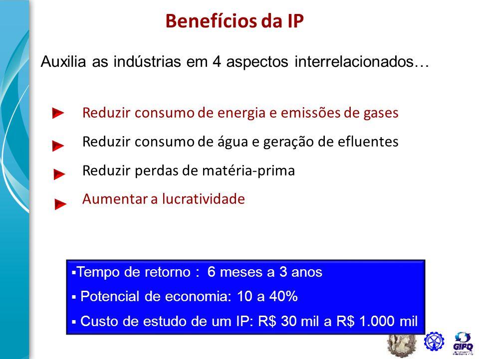 26 Polpa & Papel, Petróleo & Gás, Petroquímicos, Químicos, Aço & Metalúrgicas, Alimentos e bebidas são bons candidatos Quem pode se beneficiar com a IP.