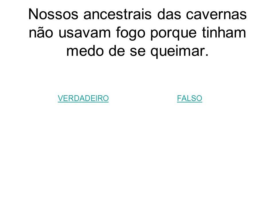 Nossos ancestrais das cavernas não usavam fogo porque tinham medo de se queimar. VERDADEIROFALSO