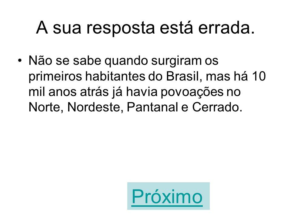 O território atual do Brasil não era habitado na Pré-História. VERDADEIROFALSO