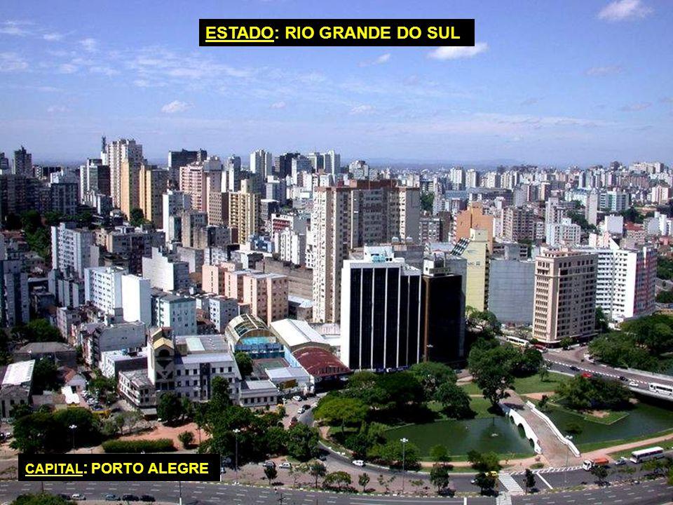CAPITAL : BRASILIA IDIOMA OFICIAL : PORTUGUÉS FORMA DE GOBIERNO : REPÚBLICA FEDERAL SUPERFICIE TOTAL : 8.514.877 KILOMETROS CUADRADOS POBLACIÓN TOTAL