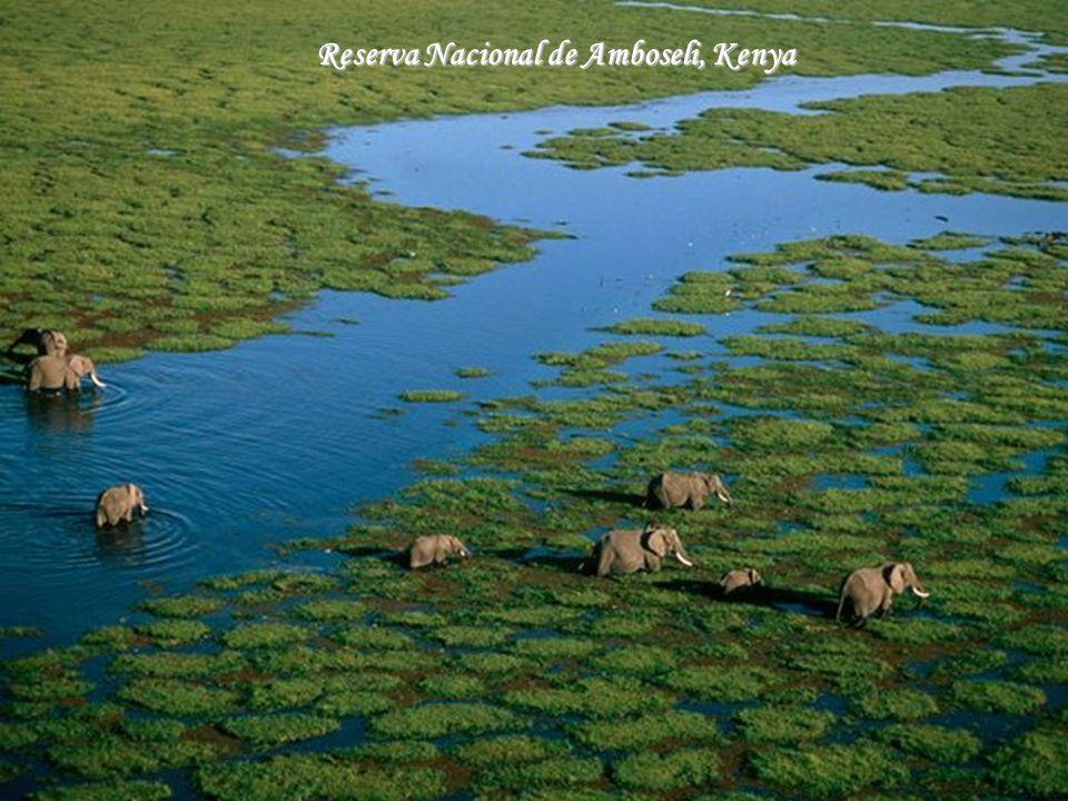 Cataratas de Kongou