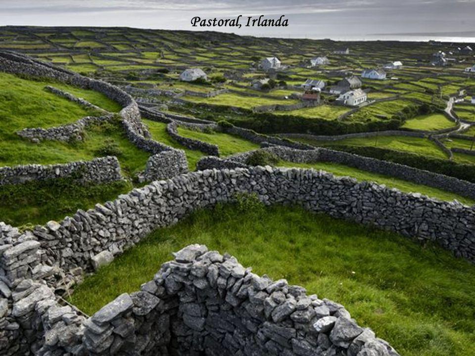 Casal no Penhasco, Irlanda
