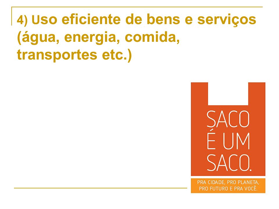 4) U so eficiente de bens e serviços (água, energia, comida, transportes etc.)