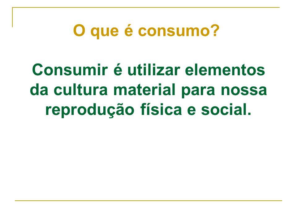 Consumir é utilizar elementos da cultura material para nossa reprodução física e social. O que é consumo?