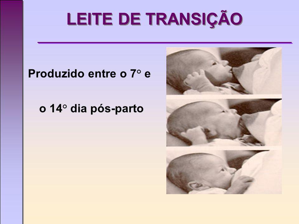 LEITE DE TRANSIÇÃO Produzido entre o 7° e o 14° dia pós-parto