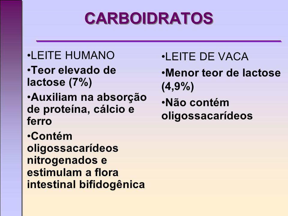 CARBOIDRATOS LEITE HUMANO Teor elevado de lactose (7%) Auxiliam na absorção de proteína, cálcio e ferro Contém oligossacarídeos nitrogenados e estimulam a flora intestinal bifidogênica LEITE DE VACA Menor teor de lactose (4,9%) Não contém oligossacarídeos