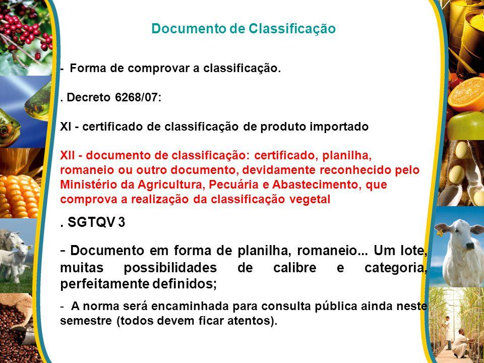 Documento de Classificação - Forma de comprovar a classificação.. Decreto 6268/07: XI - certificado de classificação de produto importado XII - docume