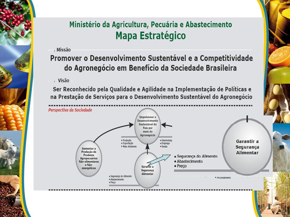 Ministério da Agricultura, Pecuária e Abastecimento - MAPA Superintendência Federal de Agricultura Secretaria de Defesa Agropecuária - SDA Departamento de Inspeção de Produtos de Origem Vegetal - DIPOV Coordenação Geral de Qualidade Vegetal Serviço de Inspeção de Produtos Agropecuários - SIPAG