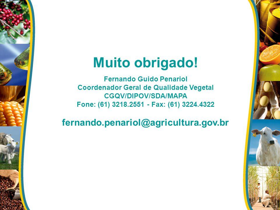 Muito obrigado! Fernando Guido Penariol Coordenador Geral de Qualidade Vegetal CGQV/DIPOV/SDA/MAPA Fone: (61) 3218.2551 - Fax: (61) 3224.4322 fernando