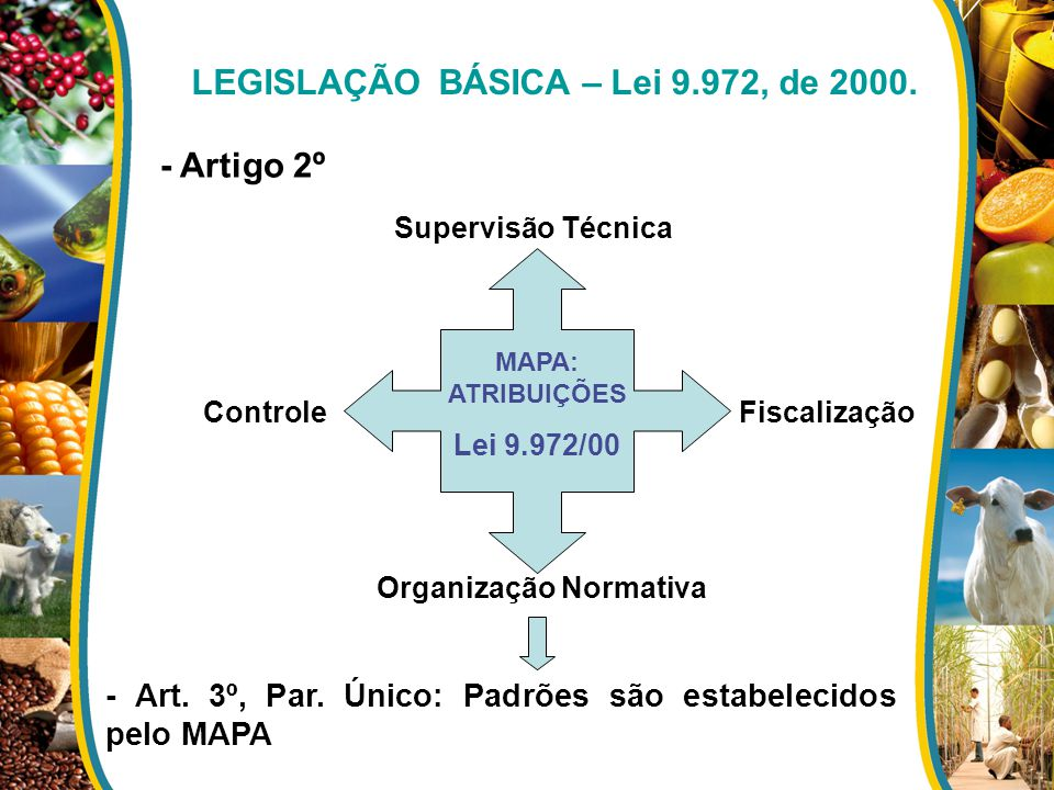 - Artigo 2º MAPA: ATRIBUIÇÕES Lei 9.972/00 Supervisão Técnica Organização Normativa FiscalizaçãoControle - Art. 3º, Par. Único: Padrões são estabeleci