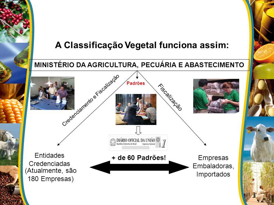 A Classificação Vegetal funciona assim: Padrões MINISTÉRIO DA AGRICULTURA, PECUÁRIA E ABASTECIMENTO Entidades Credenciadas Empresas Embaladoras, Impor
