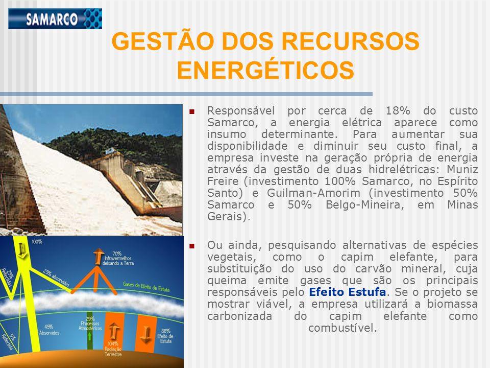 GESTÃO DOS RECURSOS ENERGÉTICOS Responsável por cerca de 18% do custo Samarco, a energia elétrica aparece como insumo determinante.