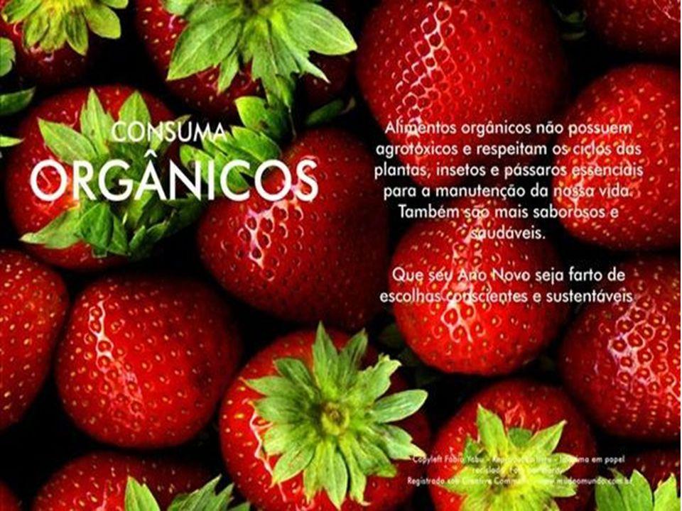 Marketing Ambiental Exemplos de campanhas.