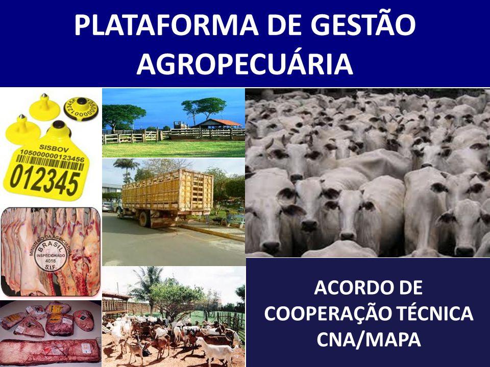 PLATAFORMA DE GESTÃO DA AGROPECUÁRIA Histórico Situação Atual Plano de Trabalho PGA O que falta Roteiro