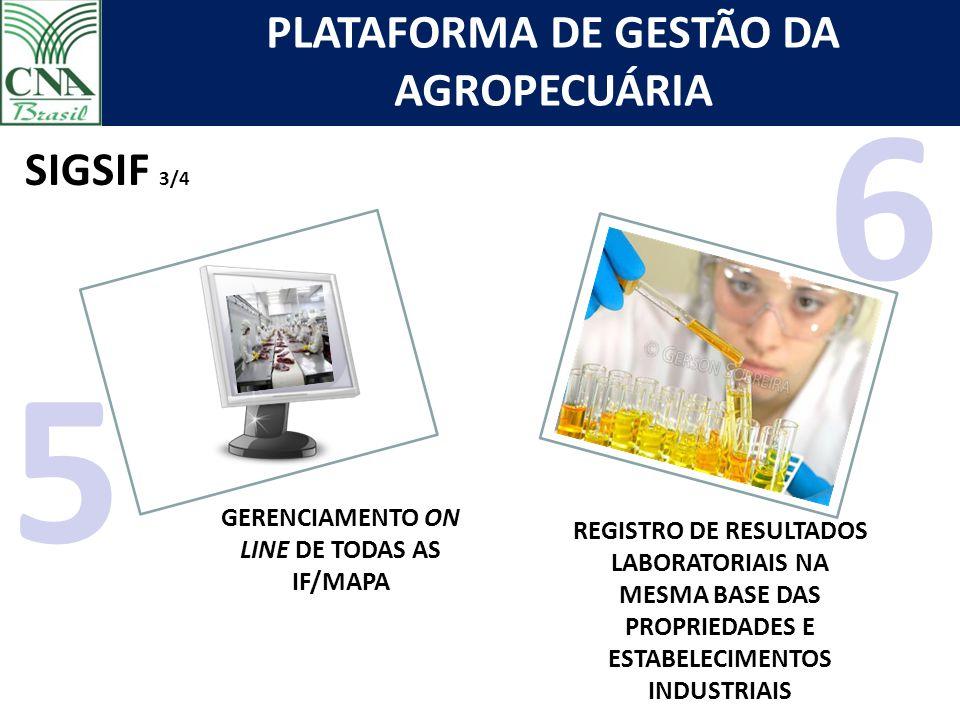 PLATAFORMA DE GESTÃO DA AGROPECUÁRIA GERENCIAMENTO ON LINE DE TODAS AS IF/MAPA 5 REGISTRO DE RESULTADOS LABORATORIAIS NA MESMA BASE DAS PROPRIEDADES E ESTABELECIMENTOS INDUSTRIAIS SIGSIF 3/4 6
