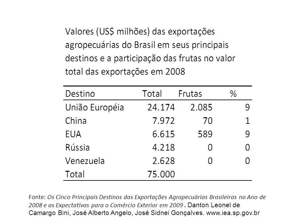 Fonte: Os Cinco Principais Destinos das Exportações Agropecuárias Brasileiras no Ano de 2008 e as Expectativas para o Comércio Exterior em 2009.