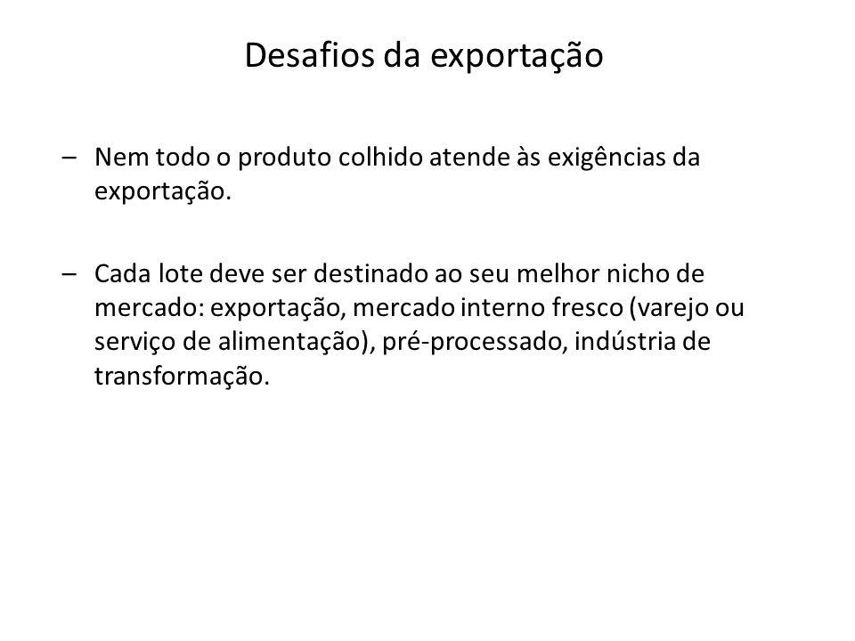–Nem todo o produto colhido atende às exigências da exportação.