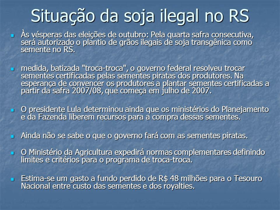Situação da soja ilegal no RS Às vésperas das eleições de outubro: Pela quarta safra consecutiva, será autorizado o plantio de grãos ilegais de soja t
