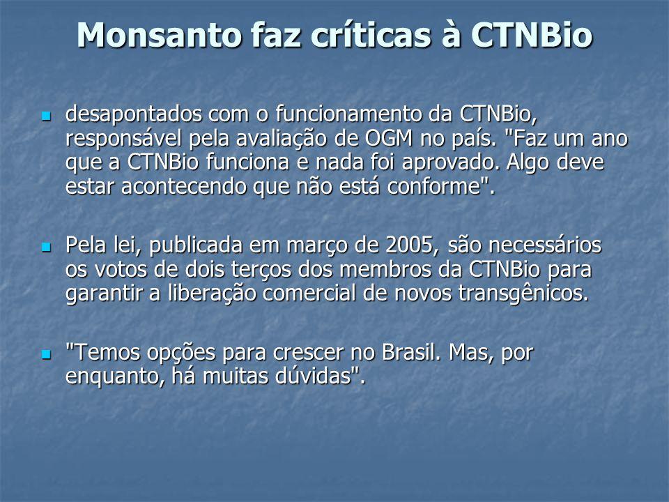 CTNBio pede mais esclarecimentos para votar comercialização de milho transgênico Nov.