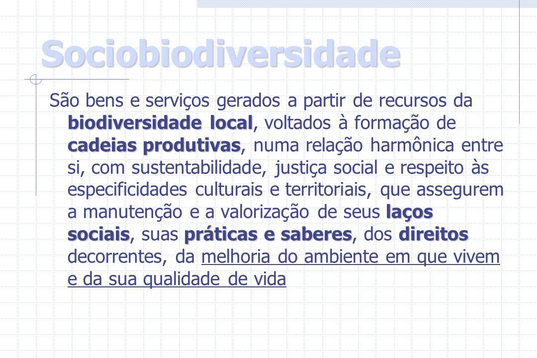 Sociobiodiversidade biodiversidade local cadeias produtivas laços sociaispráticas e saberesdireitos São bens e serviços gerados a partir de recursos d
